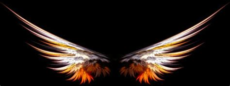 flaming wings stock images image 475794