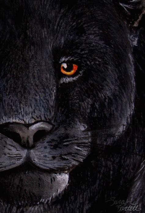 black jaguar wallpapers hd