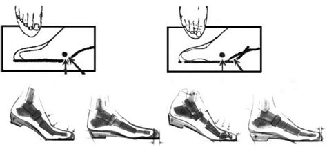 how much toe room in shoes comfort shoe specialists of st louis how to fit shoes