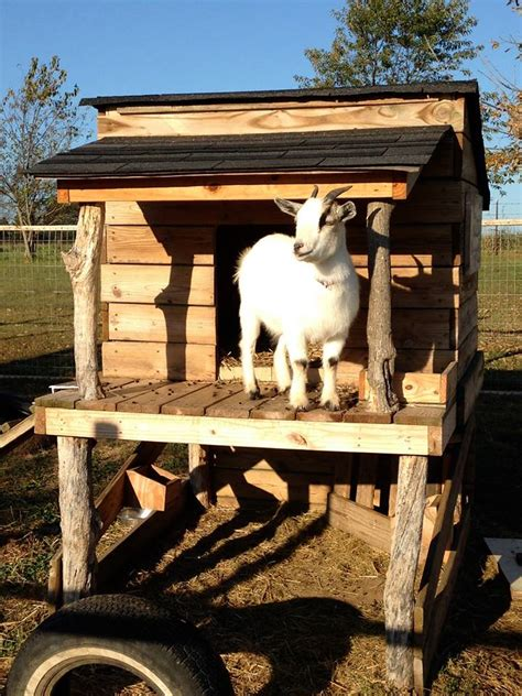 goat house pallet wooden made goat house shelter pallet ideas recycled upcycled pallets