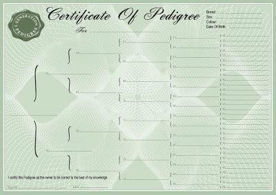 pedigree certificate template blank green pedigree certificates pedigree forms