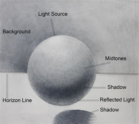 Parts Of A Shadow Drawing
