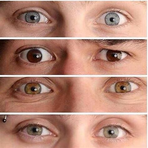 ashton irwin eye color 5sos ashton irwin calum luke hemmings