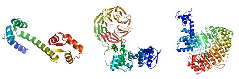 protein 3d structure prediction bonneau lab structure prediction