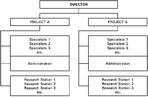 design hierarchy definition what is the difference between organizational structure