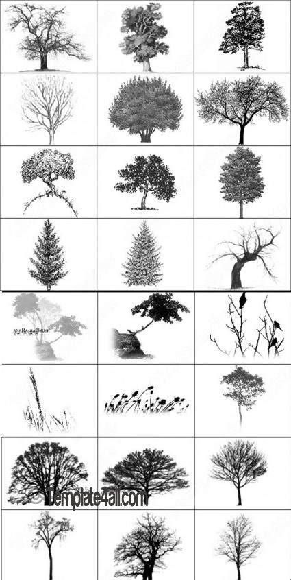 tree pattern brush 20 photoshop tree brushes free download