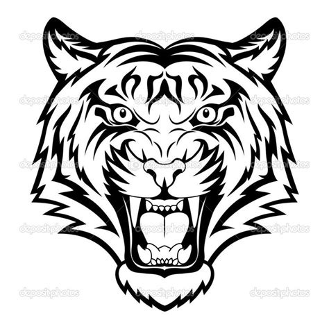 25 best ideas about tiger drawing on pinterest tiger