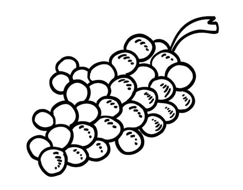 Wine Bottle Coloring Pages Wine Bottle Coloring Pages