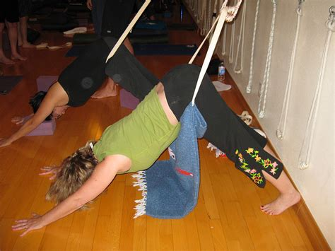downward benefits a litter of downward facing dogs ways to practice with bonnie tucson