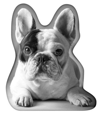 Mannys Gift Card - 51 best images about manny the frenchie com on pinterest gift cards bacon and french