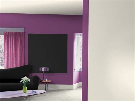 pareti interne colori pittura pareti interne