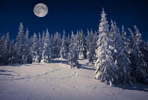 libro by night the mountain riflessioni di anna le cronache di narnia il leone la strega e l armadio significati e