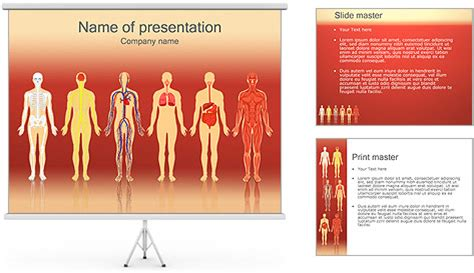 human body powerpoint template backgrounds id 0000002116
