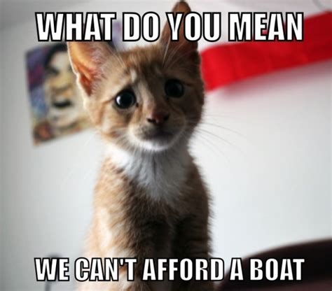 Sad Cat Memes - sad cat meme www imgkid com the image kid has it