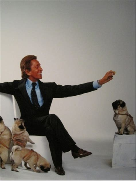 valentino and his pugs 17 b 228 sta bilder om with their pets p 229 grace husdjur