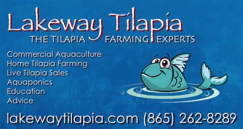 Backyard Systems Backyard Tilapia Farming How To Build A Tilapia Pond