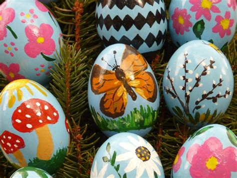 painting easter eggs free pictures butterfly 1085 images found