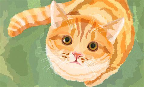 create a watercolor cat in adobe illustrator
