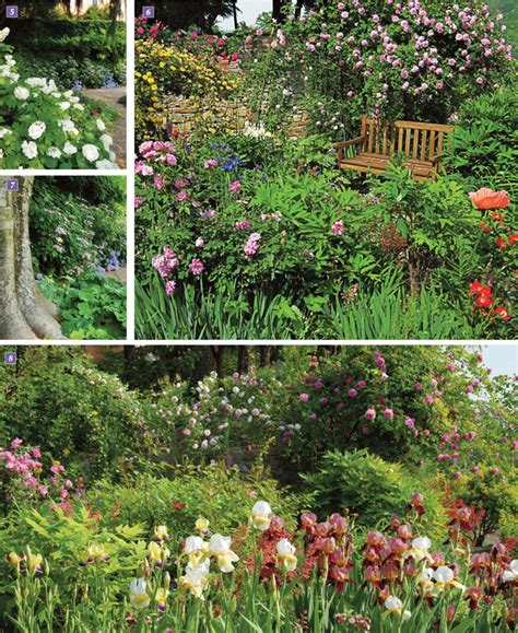 giardino terrazzato progettare un giardino a terrazze fai da te in giardino