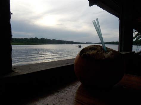 costa rica turisti per caso tramonto parco tortuguero viaggi vacanze e turismo