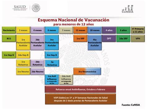 cuadro de vacunas calendario oficial de vacunaci 243 n por pa 237 ses