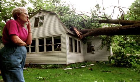 tree falls on house insurance who is responsible for the neighbors fallen tree