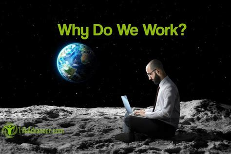 why do we work humans is the only species on the planet