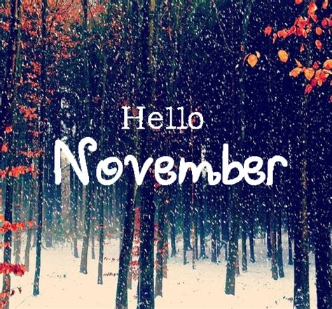 for november hello november pictures photos and images for