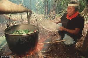 Detox Diet Before Ayahuasca by I Can T Continue To The Shaman S