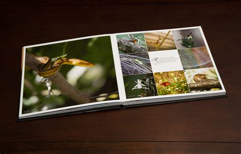 coffee table book printing with exclusive design 1 digsigns
