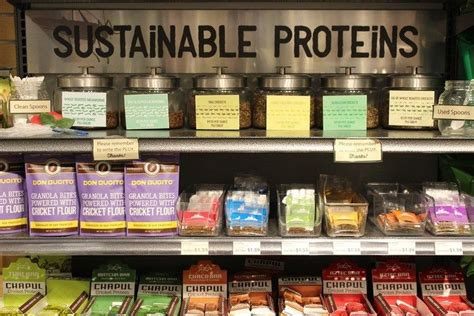 protein alternatives alternative protein collections alternative protein