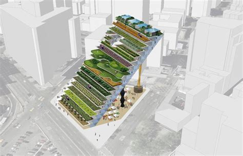 vertical farming  urban agriculture feed  hungry