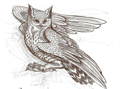 owl tattoo designs drawings owl tattoo on pinterest owl tattoos owl tattoo sleeves