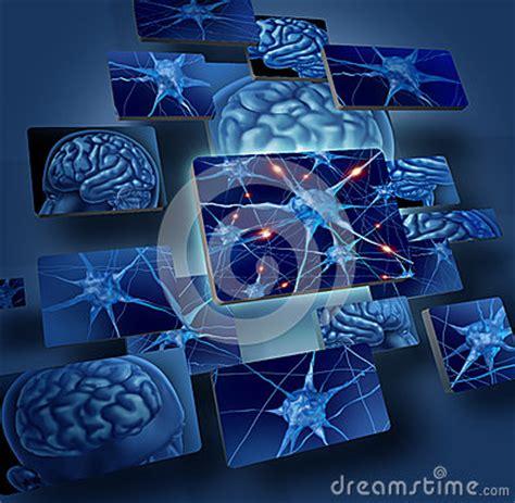 imagenes libres cerebro conceptos de las neuronas del cerebro