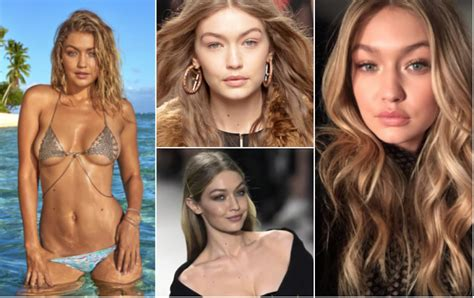 gigi hadid wikipedia the free encyclopedia on the hunt share free porn videos