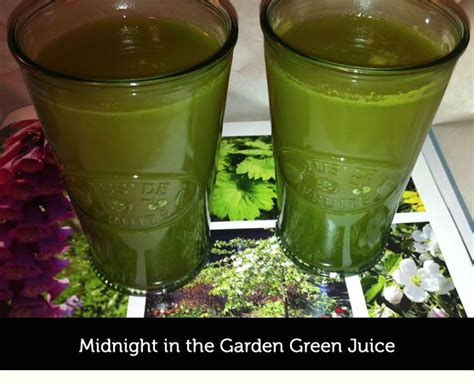 Garden Of Green Drink 53 Best Images About Green Juice On