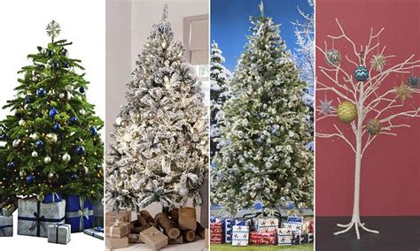david jones christmas trees can you tell which trees are luxury daily mail