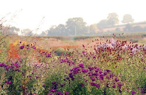 Prairie Home Plans piet oudolf lisa cox garden designs blog