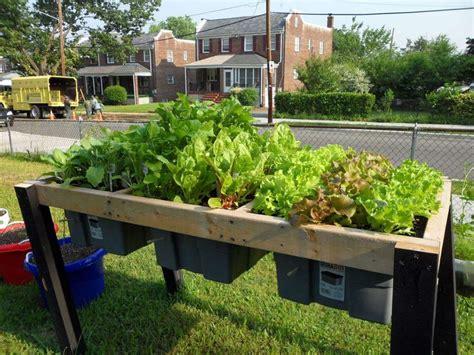 self watering raised bed raised self watering plant bed garden pinterest