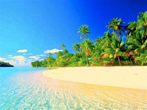 morgand2013 tropical beach