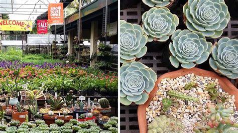 secret garden center  quezon city rl