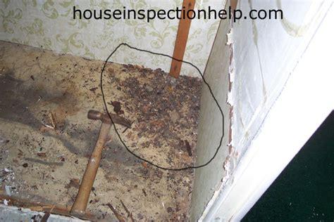 Mouse Nest Under Bathtub