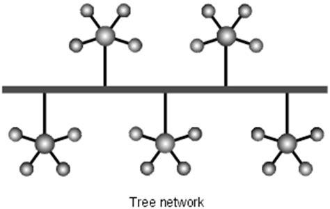 tutorialspoint tree lan topologies kullabs com