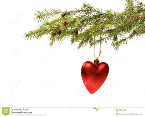 branch ate a christmas ornament stock photography image