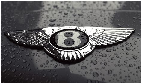 bentley logo black bentley logo meaning and history symbol bentley world