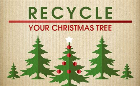 how to recycle your christmas tree in arlington city of