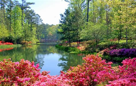 Callaway Gardens by 11 Top Tourist Attractions In Planetware