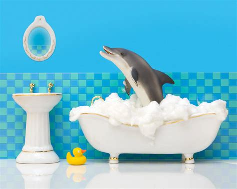 bathroom dolphin bathroom decor dolphin art kids bathroom decor by