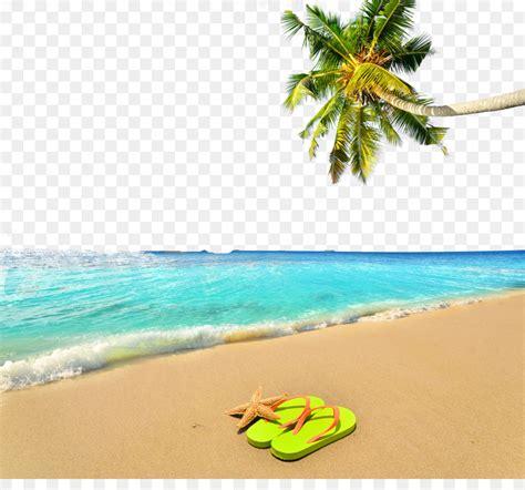vacation summer beach summer beach poster background png