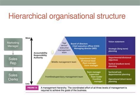 design management hierarchy hierarchystructure com image gallery hierarchy organizational structure